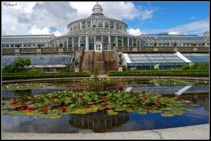 botanisk-have
